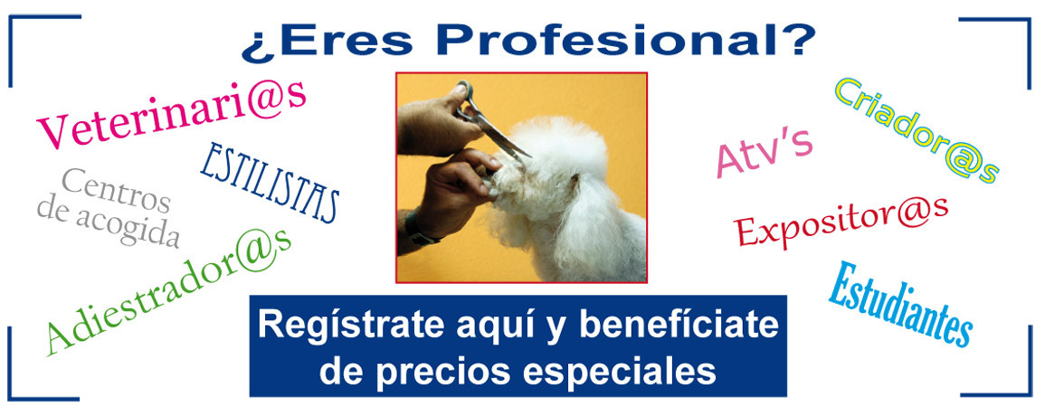 Registro Profesionales